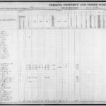 Fluvanna 1866 Personal Property Tax Part 4