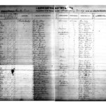 1870 Louisa County Births Green Springs Allen.jpg